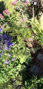 Gartengestaltung nachher